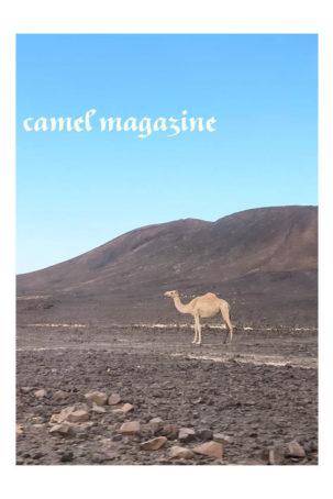 Camel Magazine